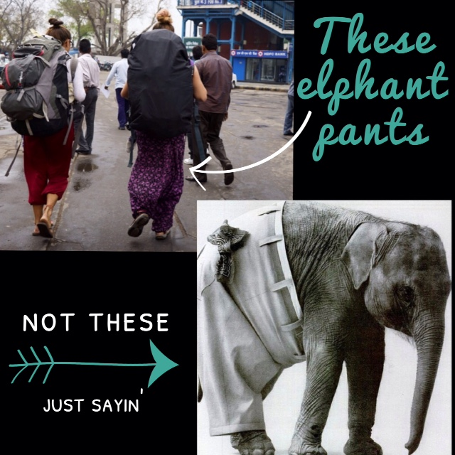do you need travel insurance for your elephant pants?