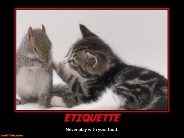 etiquette-cat